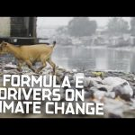 Formula E Drivers Reflect On Climate Change