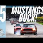 Mighty Mustang on Mustang track battle
